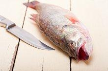 fish 007.jpg