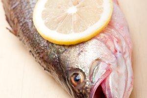 fish 011.jpg