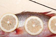 fish 018.jpg