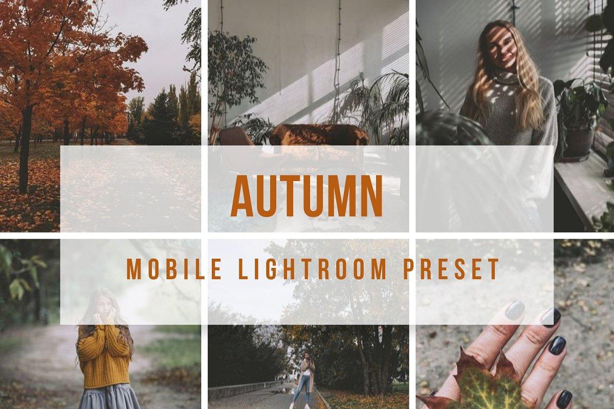 Lightroom Mobile Autumn Preset