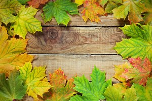 Autumn leaves border on rustic background