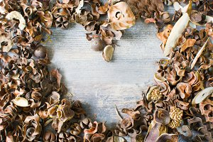Autumn leaves with heart shape