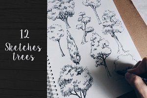 12 Vector Sketch Trees