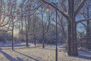 Urban park with snow