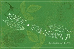 Botanical Leaves Hand-Drawn Vectors