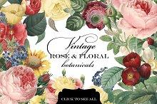 Vintage Rose & Floral Botanicals