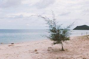 solitude beach