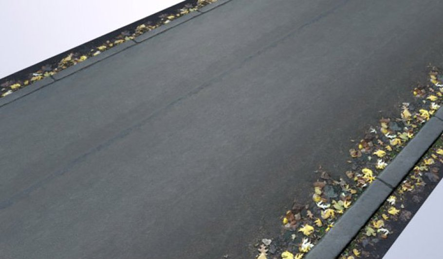 High Res - Road with Leaves 1