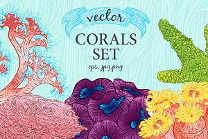 Vector corals and seaweeds set