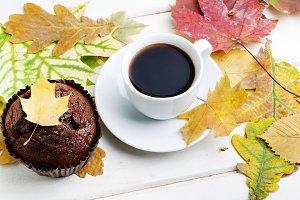 chocolate muffins background