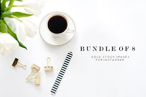 Styled Stock Photo Bundle