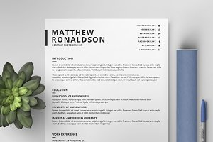 Resume/CV Template IX