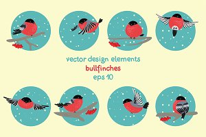 Vector bullfinches set