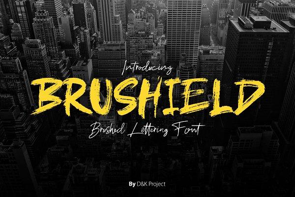 Brushield | Handwritten brush font