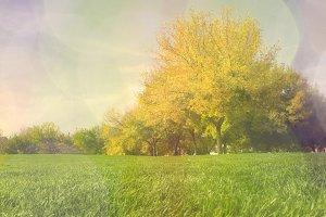 autumn fantasy landscape