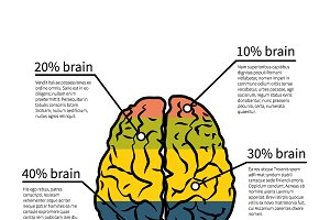 Brain potential infographic template