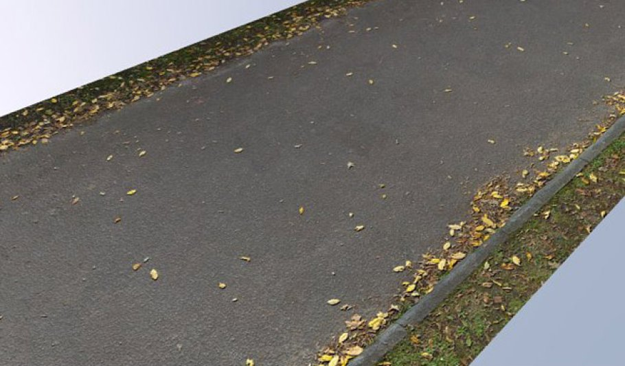Road with Leaves 2048