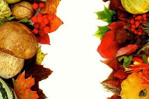 Autumn Harvest Frames