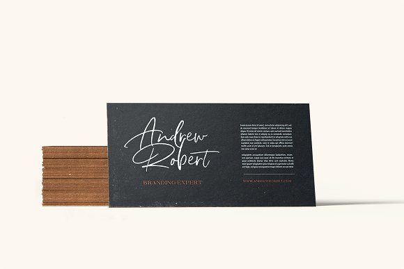 North Avellion - Script & Serif Duo in Display Fonts - product preview 4