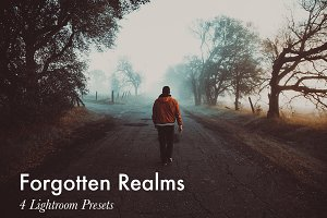 Forgotten Realms-4 Lightroom Presets