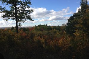 A pretty fall view