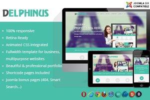 Delphinus - Corporate & Portfolio