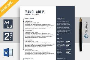 Flipped Resume / CV Ms Word