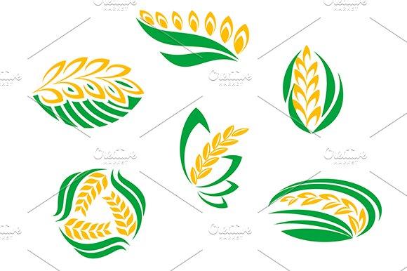 Symbols of cereal plants