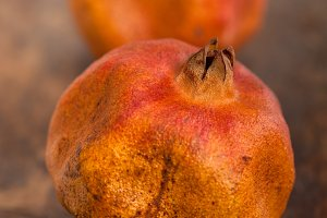 dry and old pomegranates 008.jpg