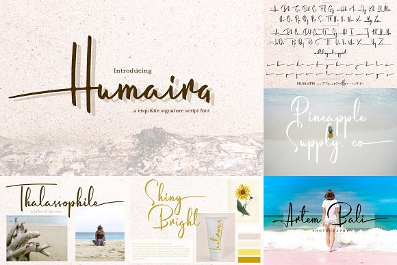 ALL OUT COLLECTION BUNDLE 90% OFF in Display Fonts - product preview 7
