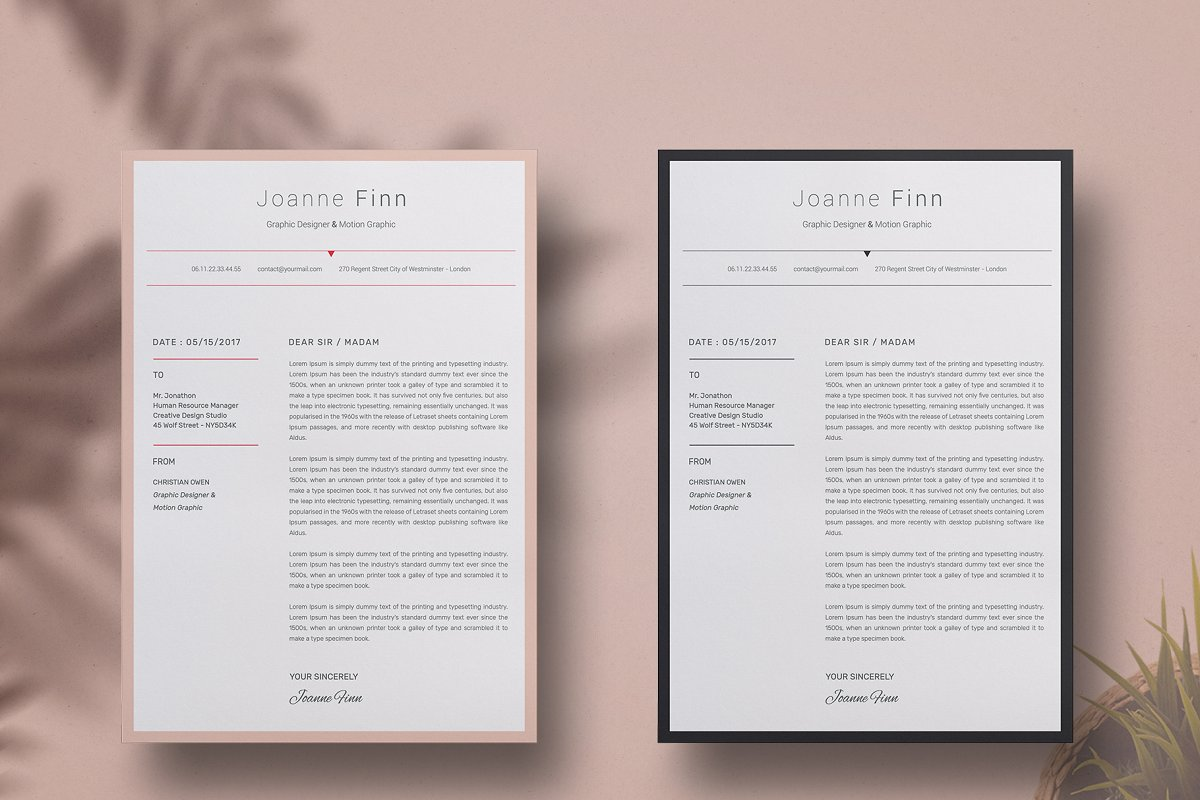 Joanne Finn ResumeCv template in Resume Templates - product preview 4