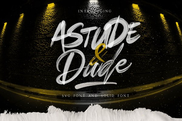 Astude & Dude SVG Font & Solid