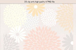 Flowers clipart  pastel colours