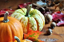 Pumpkins. Autumn decoration.