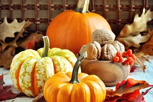 Pumpkins and walnuts. Thanksgiving
