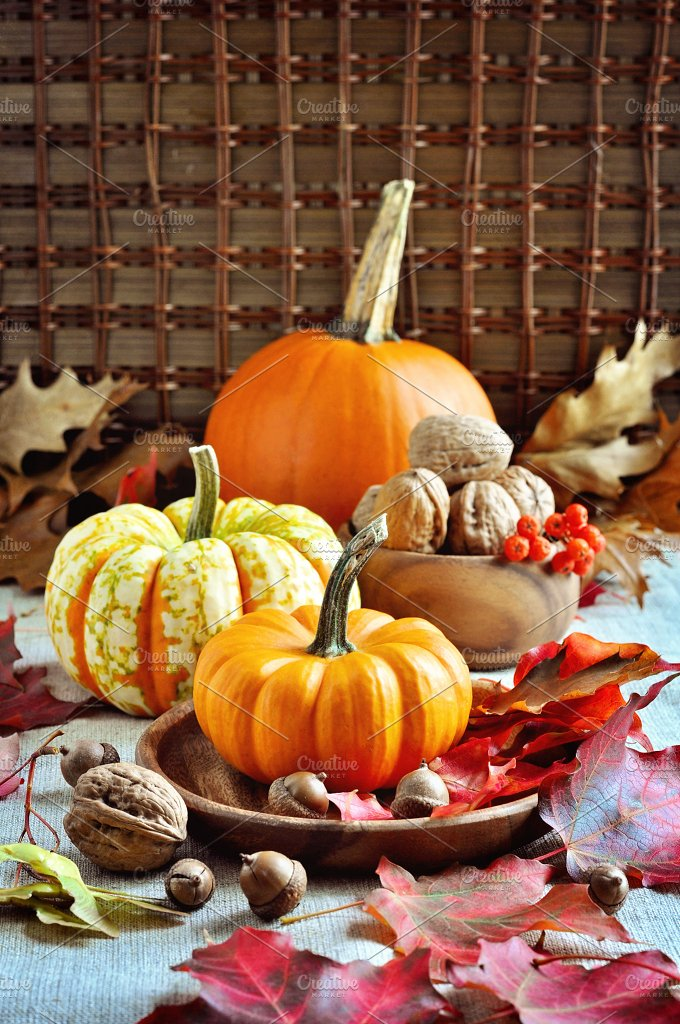 Pumpkins and walnuts. Thanksgiving - Food & Drink