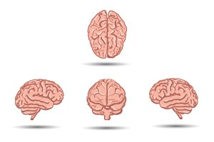 Set of five cartoon human brains