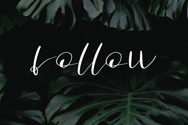 follow font