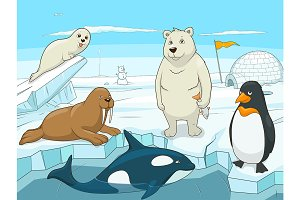 Arctic cartoon animals