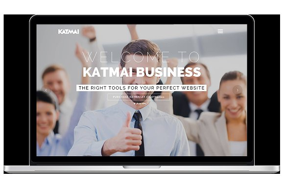 Professional Business WP Theme