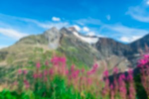 Swiss Apls mountains in summer blur