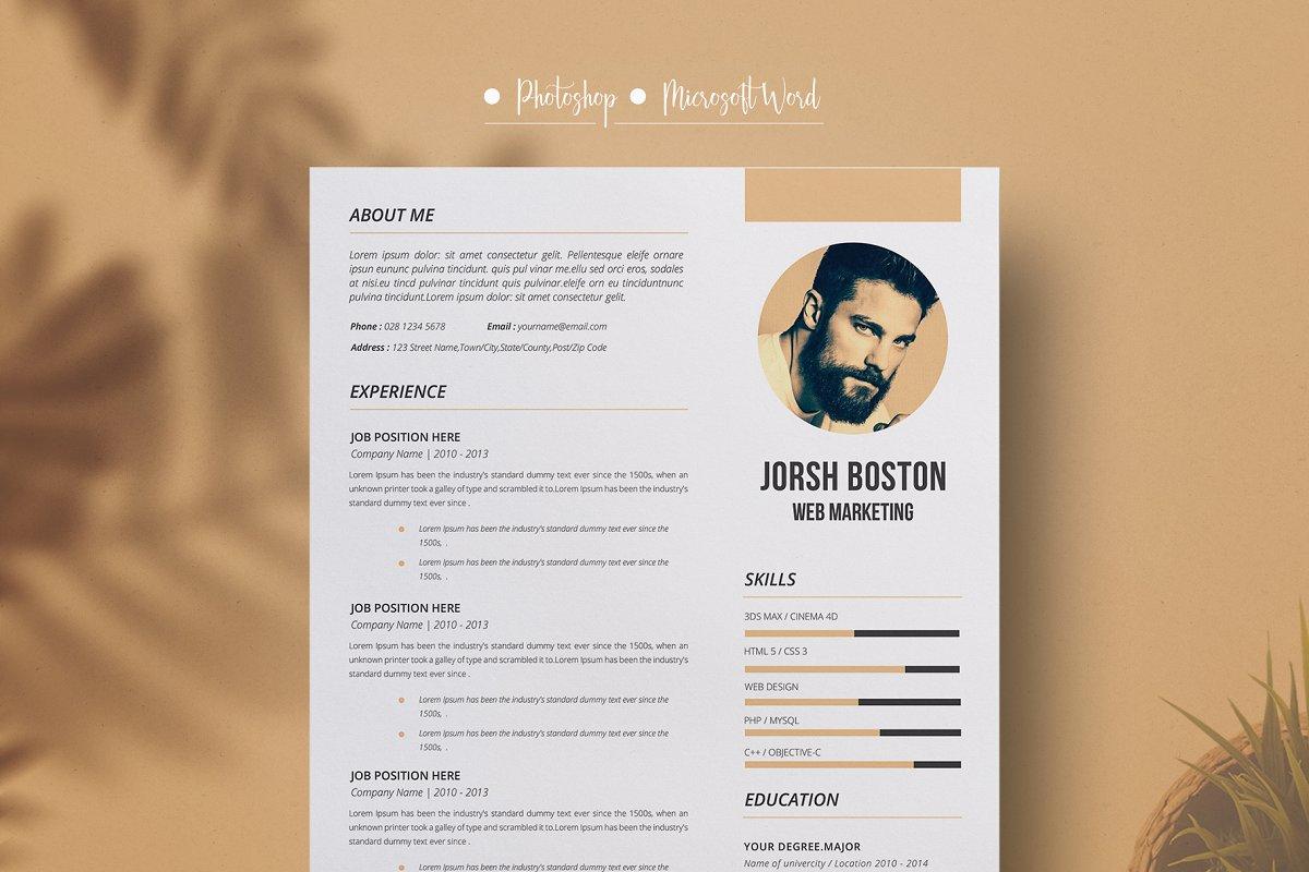 Resume Cv Design Ms Word