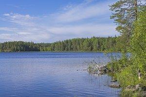 Lake in Karelia.