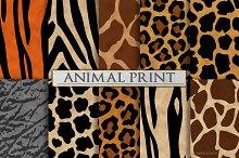 Animal Print Patterns - Zebra Print