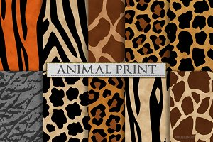 Animal Print Patterns - Zebra Print