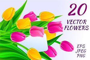 20 Vector flowers