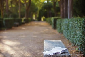 Book on a bench