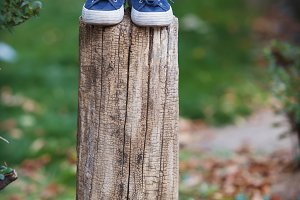 Sneakers and jeans on the stump