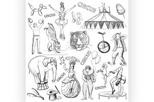 Circus performance decorative icons