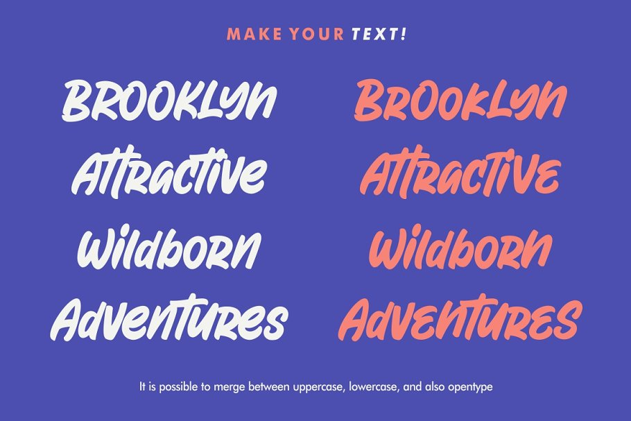 Attractype Reborn - Stylish Font in Display Fonts - product preview 1